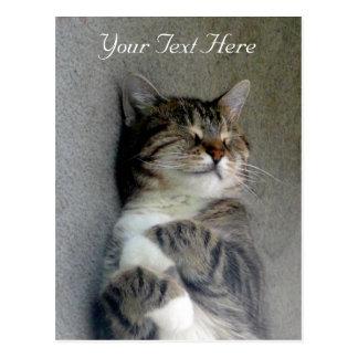 Customizable Happy Cat Post Card