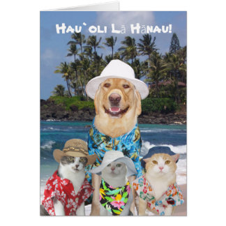 Miss Myrtie S Funny Pet Postcards Cards Amp Gifts Designs