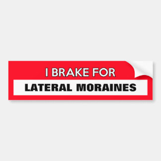 "Customizable ""I Brake For..."" Bumper Sticker"