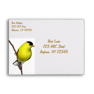 Customizable Male American Goldfinch Bird Envelope