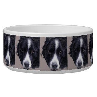 customizable (name) border collie dog bowl