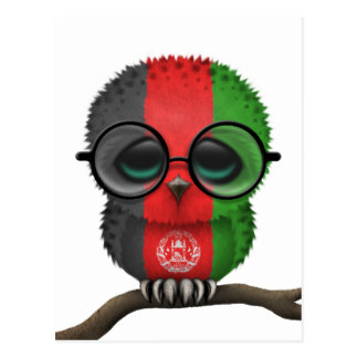 Customizable Nerdy Afghan Baby Owl on a Branch Postcard