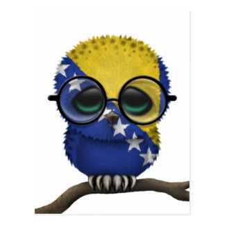 Customizable Nerdy Bosnian Baby Owl Chic Postcard
