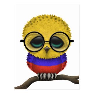 Customizable Nerdy Colombian Baby Owl Chic Postcard