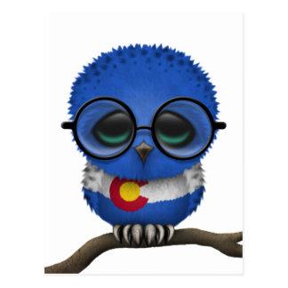 Customizable Nerdy Colorado Baby Owl Chic Postcard