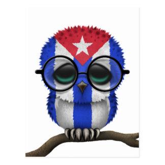 Customizable Nerdy Cuban Baby Owl Chic Postcard