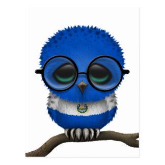 Customizable Nerdy El Salvador Baby Owl Chic Postcard