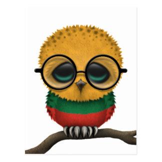 Customizable Nerdy Lithuanian Baby Owl Chic Postcard