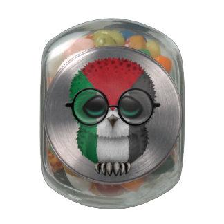 Customizable Nerdy Palestinian Baby Owl Chic Glass Candy Jars