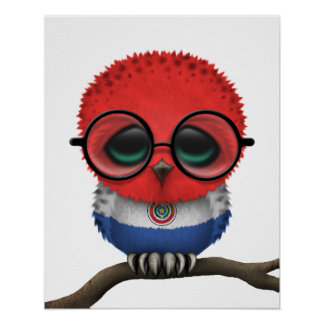 Customizable Nerdy Paraguay Baby Owl Chic Poster