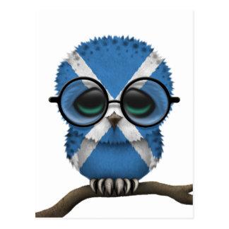 Customizable Nerdy Scottish Baby Owl Chic Postcard