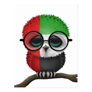 Customizable Nerdy United Arab Emirates Baby Owl Postcard