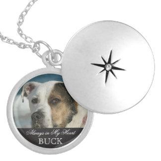Customizable Pet Memorial Photo Keepsake Round Locket Necklace