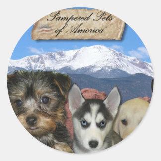 Customizable Pet Sticker