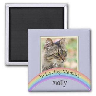 Customizable Photo Pet Memorial (Blue) Magnet