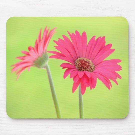 Customizable Pink Gerber Daisies on Green Mousepad