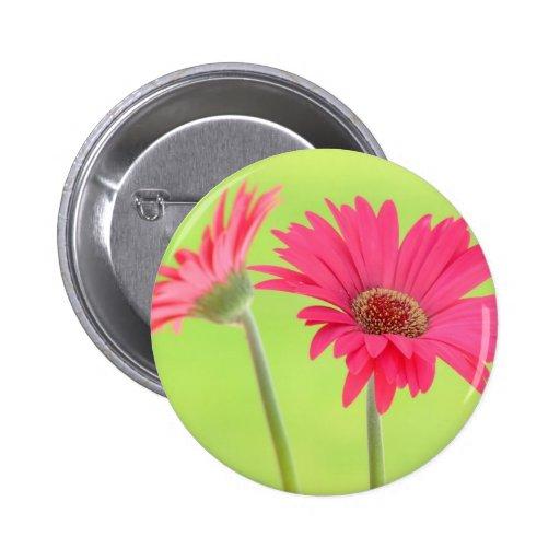 Customizable Pink Gerber Daisies on Green Pinback Button