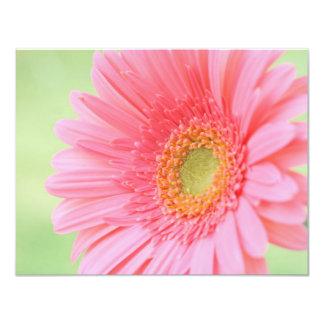 Customizable Pink Gerber Daisy Card