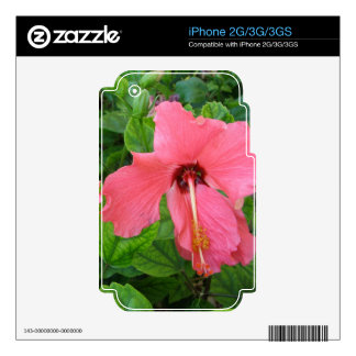 Customizable Pink Hibiscus iPhone 2G/3G/3GS Skin iPhone 2G Decal