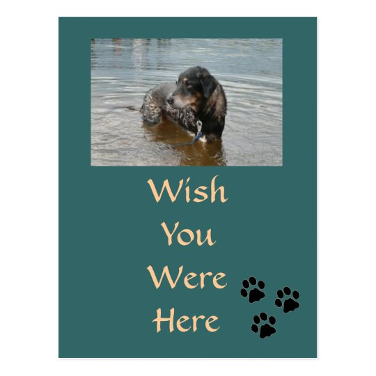 Customizable Postcard