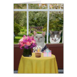 Customizable Pretty Cat Female Photobomb Birthday Greeting Card