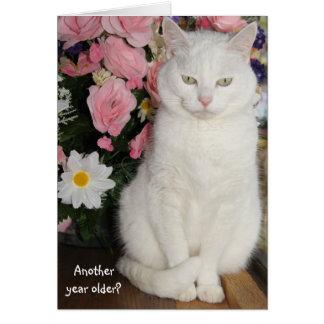 Customizable Pretty Cat Feminine Birthday Card