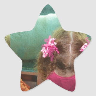 CUSTOMIZABLE PRODUCTS WITH YOUR PHOTOS, LOGOS, etc Star Sticker