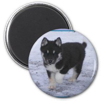 Customizable Puppy Magnet #6