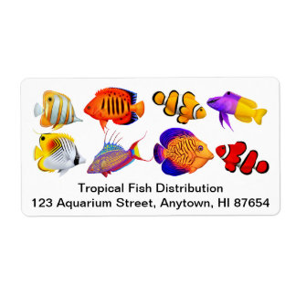 Customizable Saltwater Marine Aquarium Fish Label