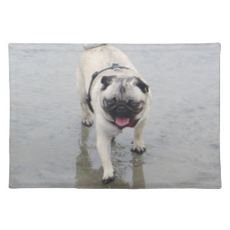Customizable Sid at the Beach Photo Placemat