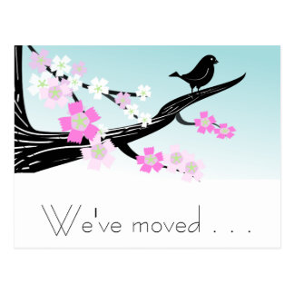 Customizable sparrow bird cherry blossoms graphic postcard