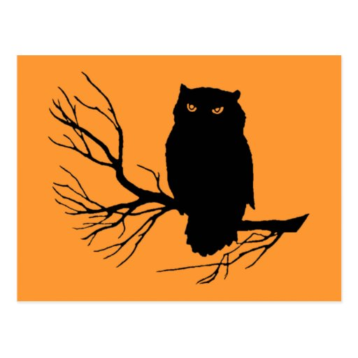 Customizable Spooky Owl Post Cards
