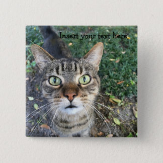 "Customizable Square Button: ""Hey You"" says the cat Pinback Button"