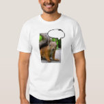 Customizable Squirrel Thought Bubble Say Anything Dresses