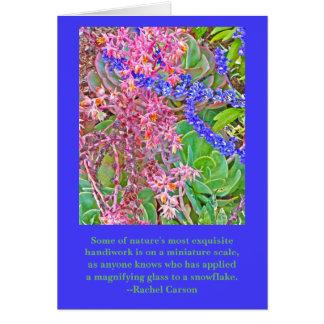 CUSTOMIZABLE TEXT/HAPPY BIRTHDAY/ECHEVERIA BLUEROS CARD