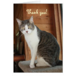 Customizable Thank You Greeting Card