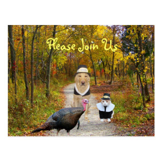 Customizable Thanksgiving Postcard Invite