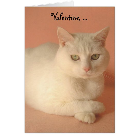 Customizable Valentine Cats Card