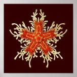 Customizable Vintage Haeckel Poster