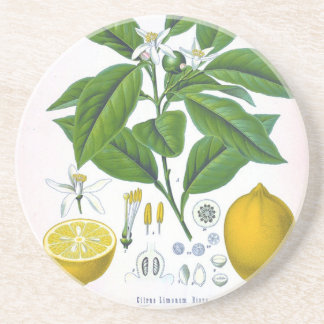 Customizable Vintage Lemon Sandstone Coaster