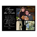 Customizable Wedding Save the Date Card 3 Pictures Postcard