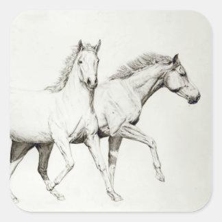 Customize a Horse Square Sticker
