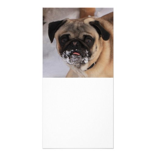Customize-able Pug Christmas Party Invitation Photo Greeting Card