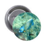 Customize Aruba Underwater photo of Fish 2 Inch Round Button