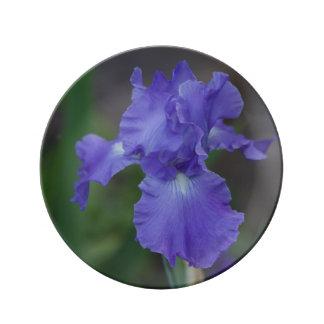 Customize Beautiful Blue Iris in Bloom Porcelain Plate