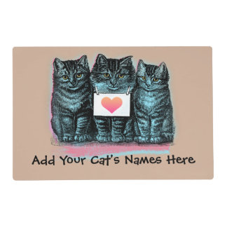 Customize Cute Vintage Cat Food Mat with Name Laminated Placemat