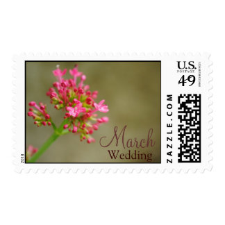 Customize March Pink Flower Wedding Postage
