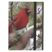 Customize Nice Cardinal photo Case For iPad Air