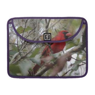 Customize Nice Cardinal photo MacBook Pro Sleeve