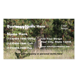 (Customize) Nice Coyote photo in Yellowstone Double-Sided Standard Business Cards (Pack Of 100)